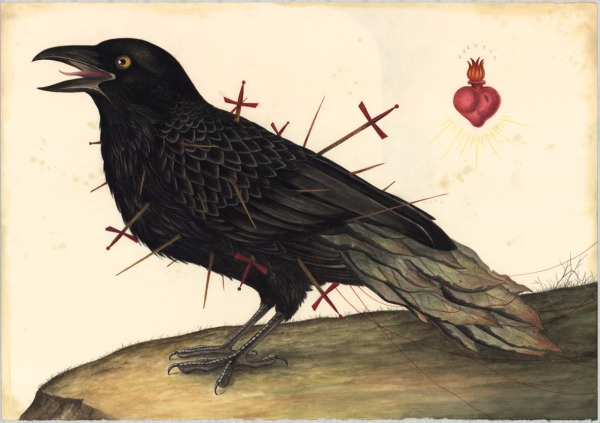 ravensacred