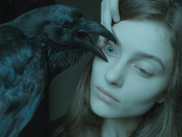 raven900