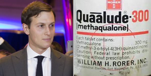 """Jared Kushner: """"I did not quaalude with Russia"""""""